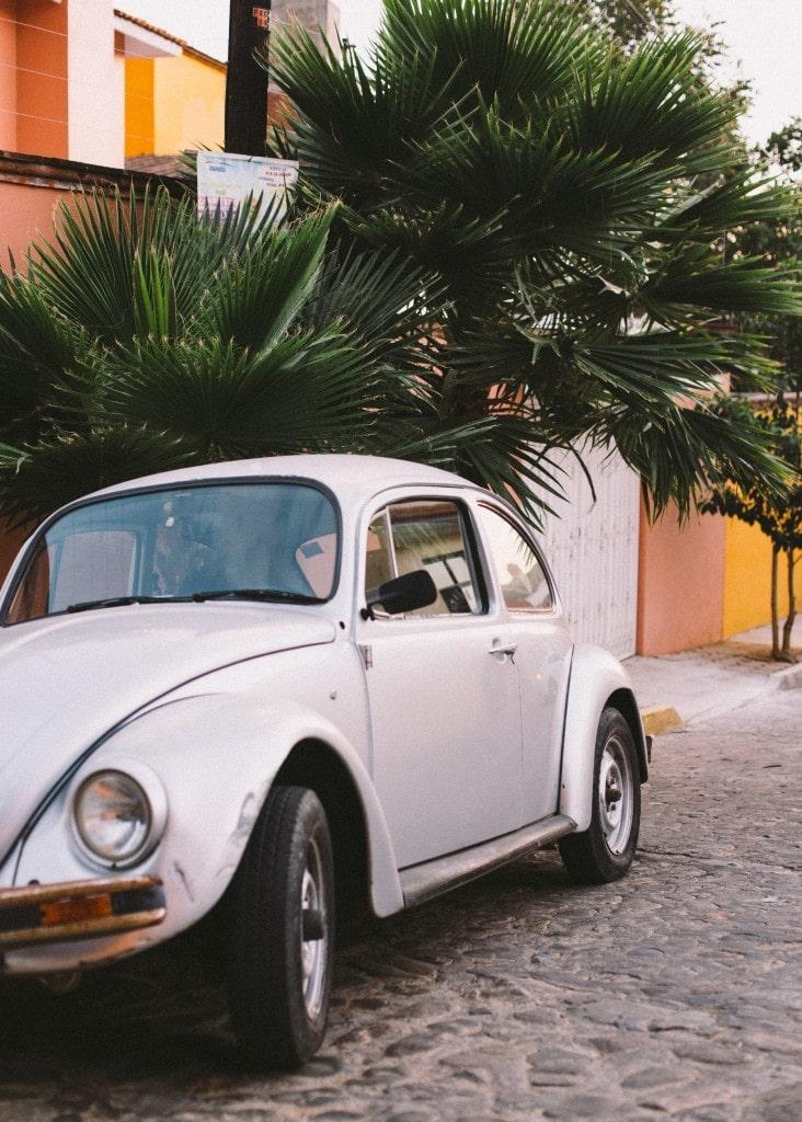Oaxaca-CMR-9082
