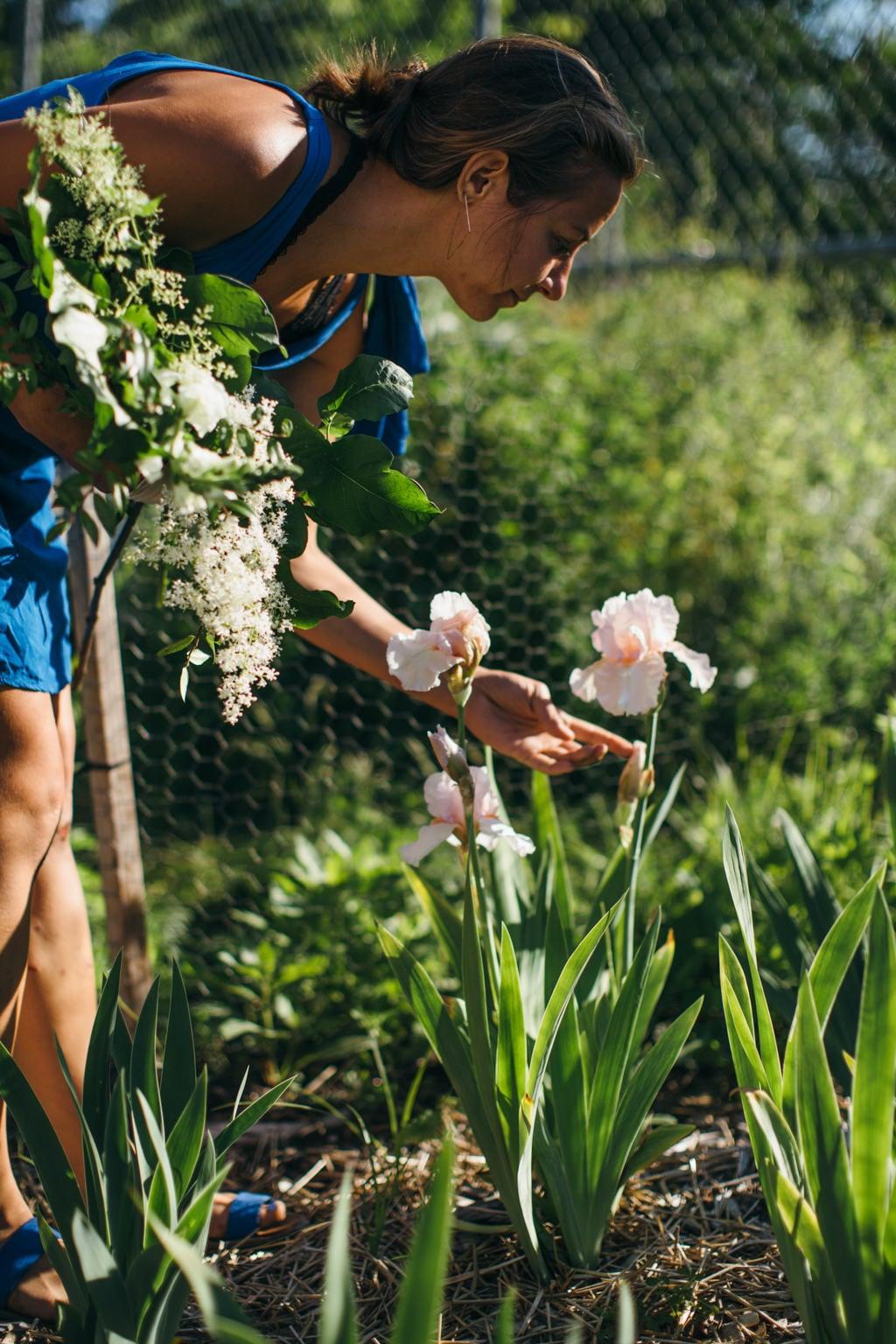 avium flowers chicago